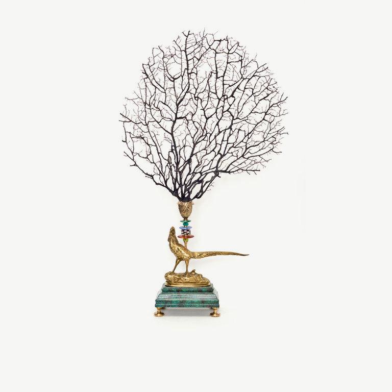 Seafan, bronze pheasant - 61cm